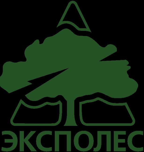 5-expolesdv.ru